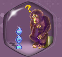 Hi, I'm wondering what that is. Click to go to the WhAt iS DNA? page.